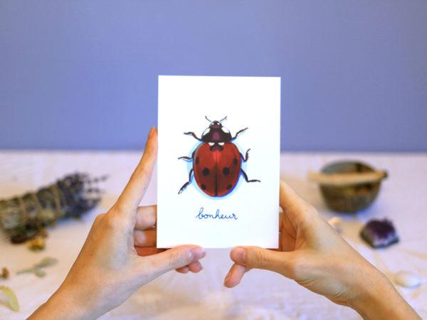 Green Mama Art - Série de cartes Animal Totem Insecte Coccinelle