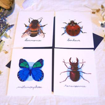 Green Mama Art - Série de cartes Animal Totem Insecte